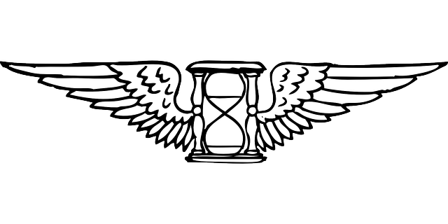sand-outline-time-clock-wings-hourglass-timer